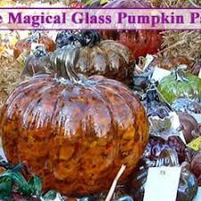 South San Jose Pumpkin Patch by The Magical Glass Pumpkin Patch Art Galleries 20 High
