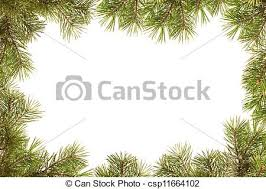 Border Frame From Christmas Tree Branches