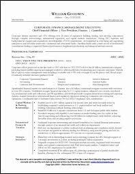 Resume For Director Level Position Best Of Sample A Cfo