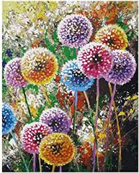 qiaoyue malen nach zahlen für schönen farbigen löwenzahn