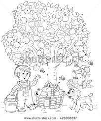 A Cute Boy And His Puppy Picking Apples Basket Full Of Different Fruits Coloring