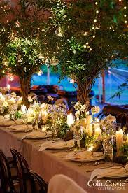 So When Combined With Flowers Hurricanes And Creative Extras Imagine How Your Wedding Lighting Can Be Transformed