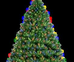 Medium Size Of Shapely Alberta Spruce Led Artificial Tree Trees In Pre