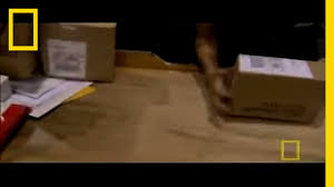 100 How To Track Ups Truck Inside UPS National Geographic YouTube