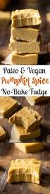 Pumpkin Desserts Easy Healthy by 17 Best Images About Paleo Pumpkin Everything On Pinterest
