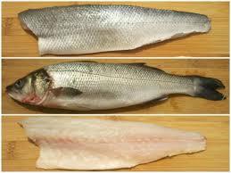 cuisine bar poisson habiller et fileter un bar ou un loup en images le sot l y laisse