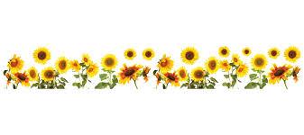 Sunflower Bath Towel Set by Wallpops Sunflowers Border Wall Decal U0026 Reviews Wayfair