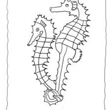Free Seahorse Coloring Sheet Collection Of Pictures To Color