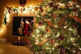 The Donts Of Christmas Trees Target And Our Mother There She