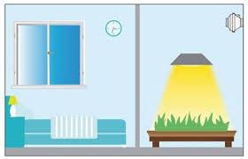 refroidir chambre de culture les conseils air culture indoor