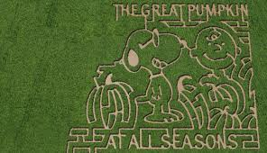 Mazes In Los Angeles Ca by Best Corn Mazes In The Chicago Area Cbs Chicago