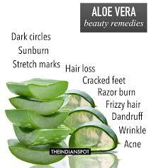 Best 25 Uses for aloe plant ideas on Pinterest