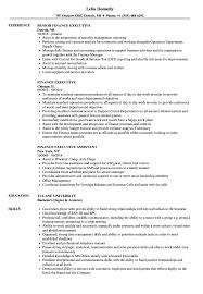 ResumeFinance Executive Resume Samples Velvet Jobs Sample Image File Resumes Examples Best Resu 2018
