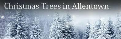 Christmas Tree Allentown Loading