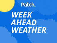 bed stuy ny patch breaking news local news events schools