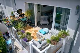 die richtigen pflanzen für den balkon ratgeber obi