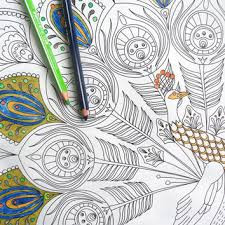 Giant Colouring Page Adult Coloring Books Peacock Illustration Kids Poster Feather