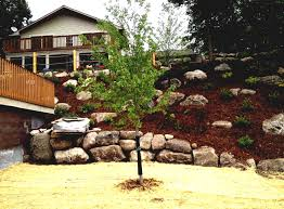 Landscape Ideas For Backyard Hill | The Garden Inspirations Landscape Sloped Back Yard Landscaping Ideas Backyard Slope Front Intended For A On Excellent Tropical Design Tampa Hill The Garden Ipirations Backyard Waterfall Sloping And Gardens 25 Trending Ideas On Pinterest Slopes In With Side Hill Landscaping Stones Little Rocks Uk Cheap Post Small