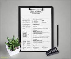 Adobe Resume Template Free Examples Free Creative Resume ... Free Word Resume Templates Microsoft Cv Free Creative Resume Mplate Download Verypageco 50 Best Of 2019 Mplates For Creative Premim Cover Letter Printable Template Editable Cv Download Examples Professional With Icons 3 Page 15 Touchs Word Graphic