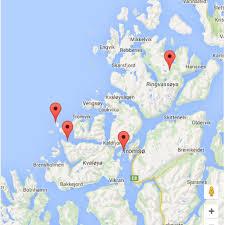 Whale Safari & Northern Lights from Tromso Polar Holidays