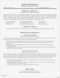 Travel Nurse Resume Examples Best Perfect Nursing Awesome Resumes 0d Wallpapers