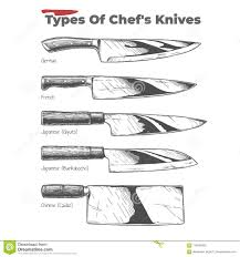 Kitchen Knives Names Types Of Kitchen Knives Stock Vector Illustration Of