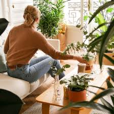 unsere tipps tricks für die pflege deiner pflanzen
