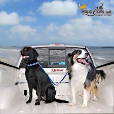 California Car And Truck Pet Laws - Cool Stuff For Pets Amazoncom Bushwhacker Paws N Claws K9 Canopy W Pad And Tether Traveling With Your Pet This Holiday Part 4 Mckinney Animal Custom Dog Boxes River View Kennels Llc Truck Topper For Sale Woodland Kennel Metal Wire Crates Free Shipping Petco Fall Winter Products Lest See All The Home Made Dog Boxs Biggahoundsmencom Diy Bed Crate Wwwpalucasidacom Simple Beds Building Best Pickup Resource Ideas 55072 Eisenhut Supplies