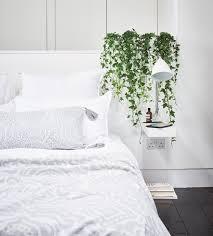 welche pflanzen fürs schlafzimmer 10 arten für gutes raumklima