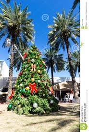 Download Christmas Tree In Miami Stock Photo Image Of