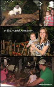 Pumpkin Patch Fort Worth Tx 2014 by 10 Spots To Visit With Tots In Dallas Fort Worth U2013 Four To Adore
