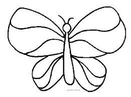 Butterfly Outline Coloring Page Printable Sheet Anbu