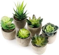 gomaihe kunstpflanze künstliche sukkulenten pflanze 6 stücke mit grauem topf 6 x 8cm mini kunststoff fälschung grünes pflanzen deko wohnzimmer