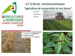 chambre agriculture alsace les 6 7 12 février la chambre d agricult