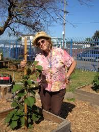 The Stonehurst Edible Garden Oakland Voices