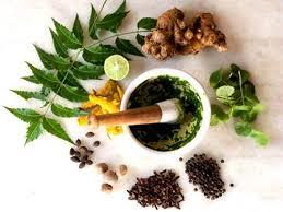 Ayurvedic Treatment Medicine Cure for Piles — Ayurvedic Expert