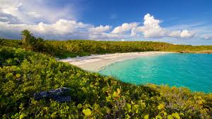 100 Vieques Puerto Rico W Hotel Cheap S In Island Find 64 Deals Travelocity