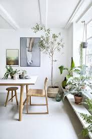 58 blumenbank ideen zimmerpflanzen pflanzen