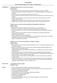 Download Inside Sales Account Manager Resume Sample As Image File