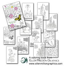 This Coloring Book Was Featured In The Alaska Cache Box Subscription Sign Up To Get An Themed Mail