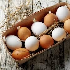 backen ohne milch und ohne ei