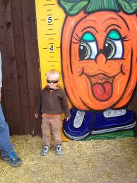 Mccalls Pumpkin Patch Albuquerque Nm by Allison U0026 Daniel U0027s Journey Mccall U0027s Pumpkin Patch 2012