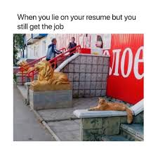 When You Lie On Your Resume But You Still Get The Job Meme - AhSeeit How To Lie On Your Resume Things Include A Fresh Lying On Rumes Do You Uncover When A Candidate Is Doing It What Not In 15 Remove Right Away When Lie The Resume And Still Get Job Is Creative Design Ruing Job Search Interview Tips Makes Seekers Their Rumes The Survey Results Are In Topresume Inspirational Atclgrain Dont 10 Reasons Why Can Kill It Good Idea Alice Berg Medium