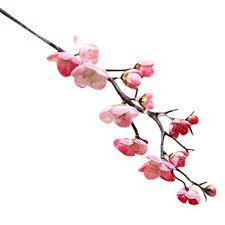 rosa chagner künstliche blumen kirschblüte wohnzimmer