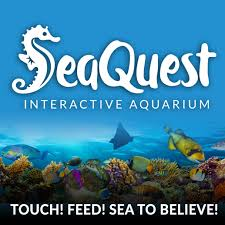 Sea Quest Interactive Aquarium Sponsors Opportunity To Give To Those ... Kids And Sharks A Fun Morning At Seaquest Las Vegas Vintage Blue Under The Sea Interactive Aquarium Discount Tickets New Attraction Comes To Planned For River Ridge Mall In The Salt Project Things Do Planned Aquarium Folsom Faces Community Opposition Deal Now Valid All Summer Admission Tickets Or Ultimate Experience Package Certifikid Seaquests Problems Extend Beyond Discount Opening United Moms Network Quest Coupons Mk710 Deals