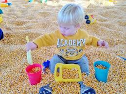 Rileys Pumpkin Patch Pittsburgh by 10 Family Friendly Farm Adventures This Fall In Pittsburgh