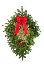 Noble Christmas Trees Vancouver Wa by Granstrom Evergreens L L C