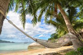 Hammock hanging between palm trees at the sandy beach and sea