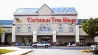Christmas Tree Shop Sagamore by Tasty Self Watering Christmas Tree Stand Shining System Lee Valley