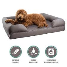 25 Best Rated Dog Beds for Dogs 2017 Pet Life Today